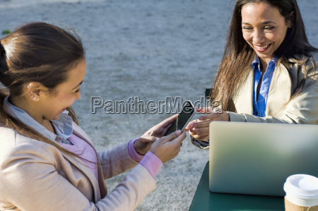 young adult female twins using laptop