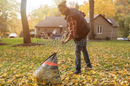 mid adult man raking in autumn