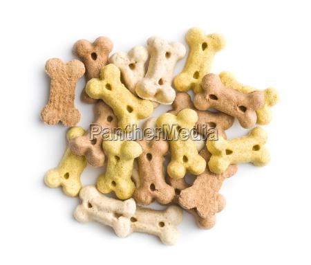 cibo animale domestico peluche cane cucciolo