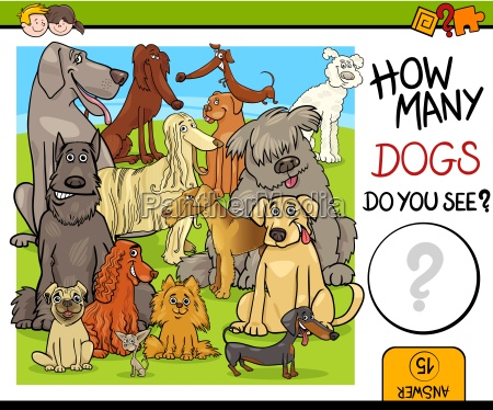 counting activity with dogs