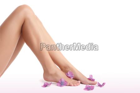 beautiful womens legs
