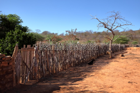 plot and garden fence