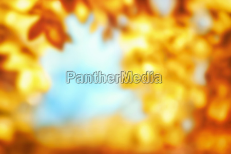 blurred background of autumn with glowing