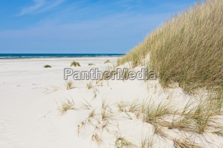 summer sun vacation dune with