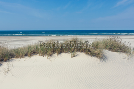 dune with grass in front of