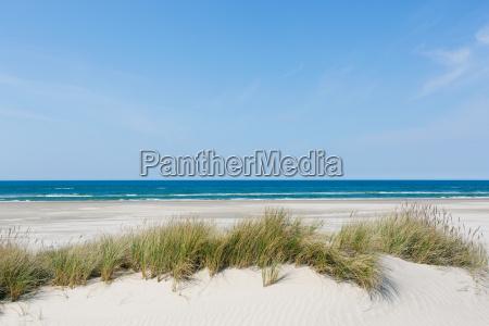 empty sand beach at the sea