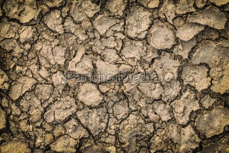 cracked dry ground