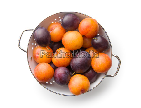 yellow and purple plums