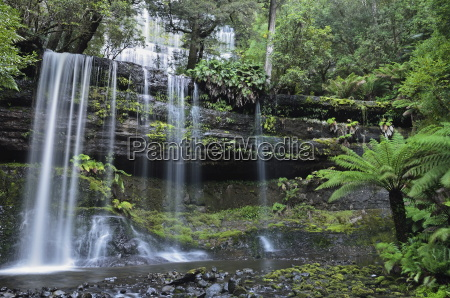 russell falls mount field national park