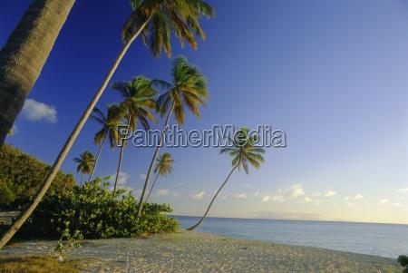 darkwood beach antigua caribbean west indies