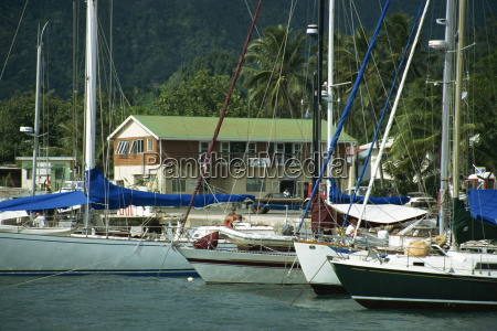yachts stern to quay avatiu harbour