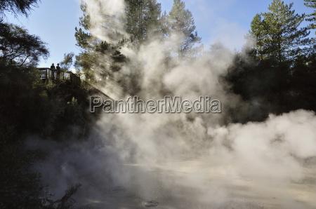 mud pools waiotapu thermal area waikato
