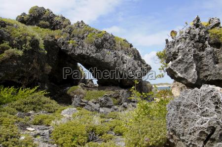 north shore barbuda antigua and barbuda