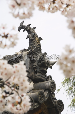 decorated roof tiling and cherry blossom