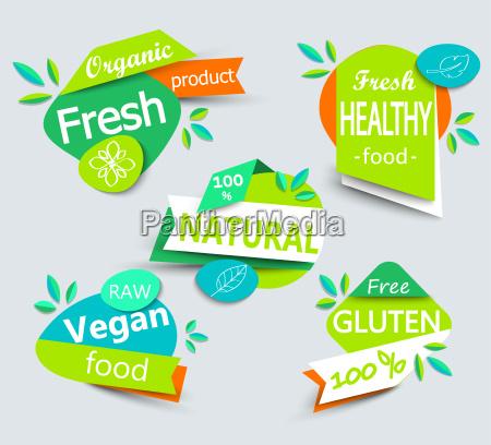 modern vector set of healthy organic