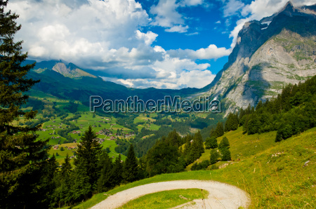 summer in the swiss mountains