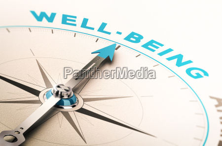 well being or wellness