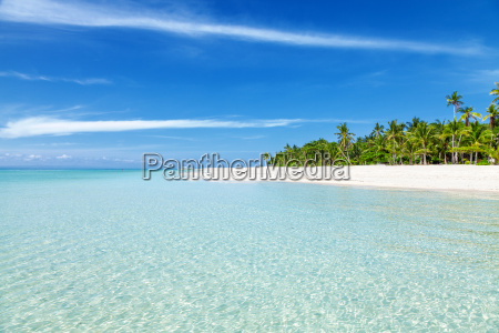fantastic turquoise beach with palm trees