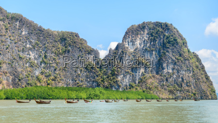 limestone island with mangrove forest and