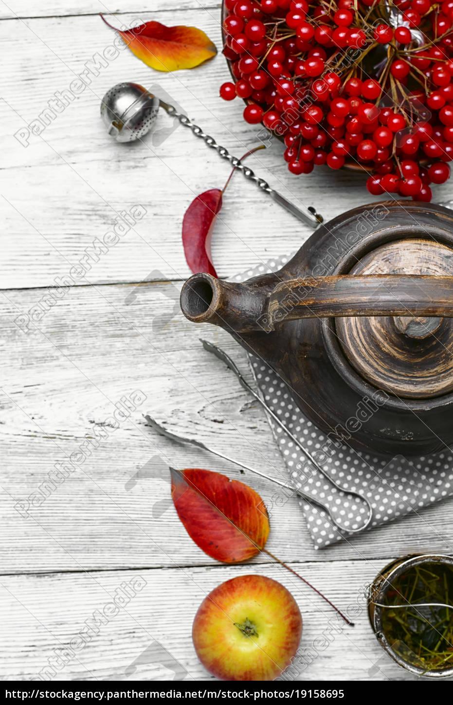 tea, with, viburnum - 19158695