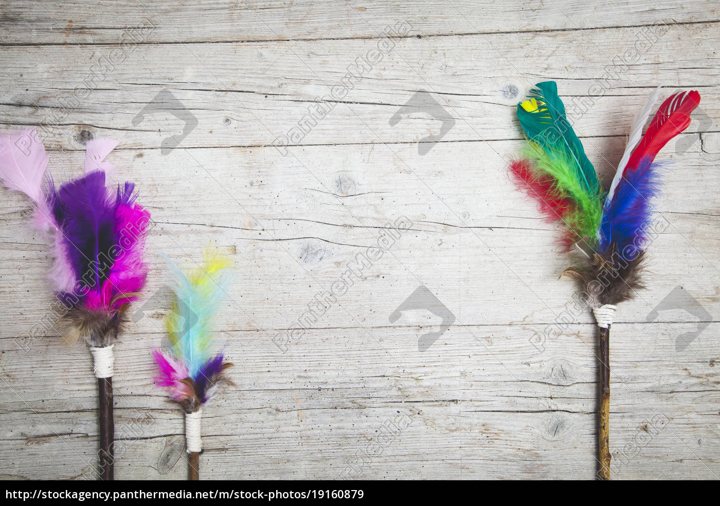 colorful, feathers, background - 19160879