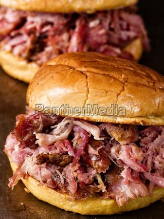 rustic, american, pulled, pork, sandwich - 19160137