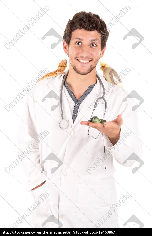 veterinarian, with, animals - 19160867