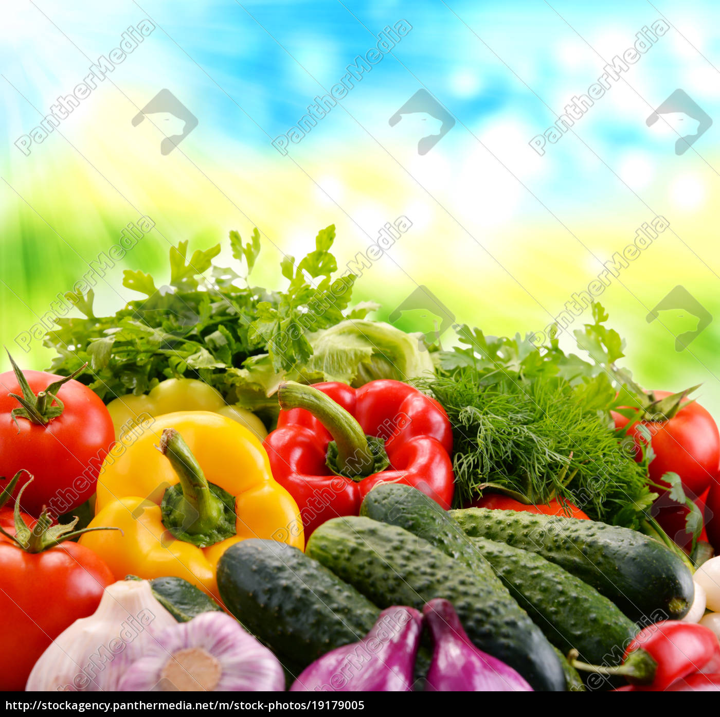 variety, of, fresh, organic, vegetables - 19179005