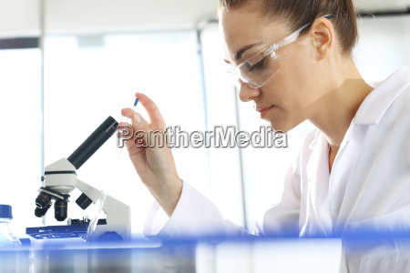 the biotechnologist examines the samples under
