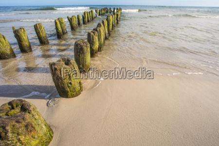old groynes in the baltic sea