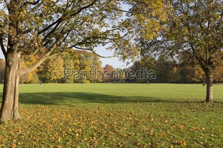 the english garden in munich in