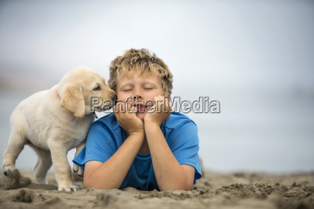 young boy playing with golden labrador