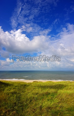 blue sky green dunes and the