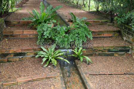 walkway in botanic rose garden