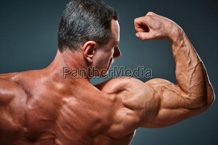 torso, of, attractive, male, body, builder - 19253799