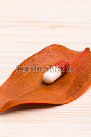 medical pill on single orange leaf