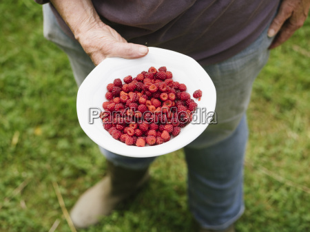 woman holding bowl with japanese wineberries