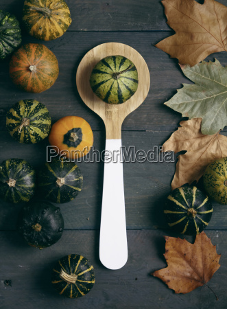 ornamental pumpkins wooden spoon and autumn