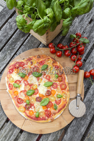 vegetarian, pizza, with, mozzarella, and, tomatoes - 19330681