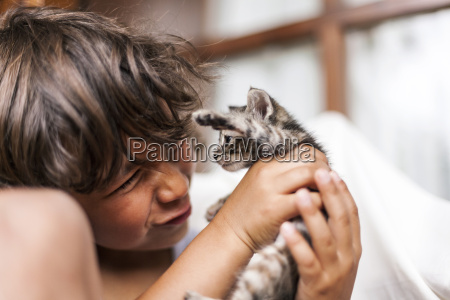 little boy holding tabby kitten pulling