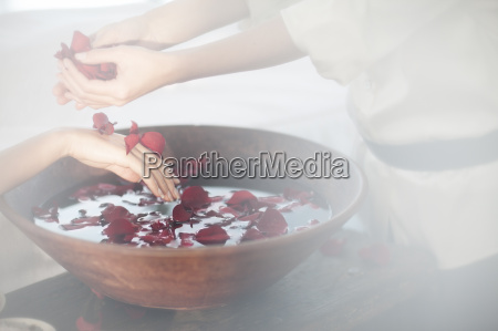 hands and bowl of rosewater in