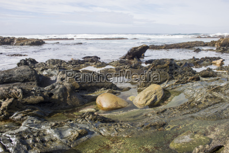 two boulders in rock pool