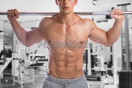 bodybuilder bodybuilding muscles body building gym