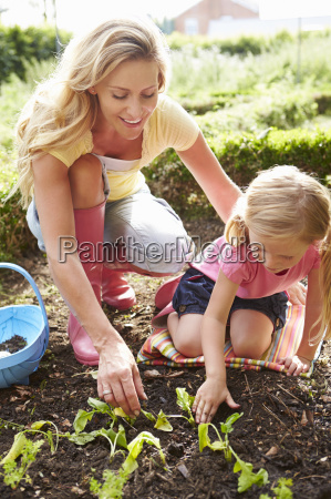 mother and daughter planting seedlings on