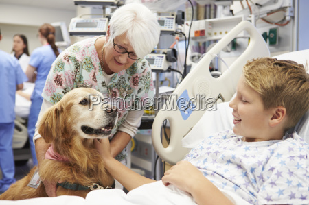 therapy dog visiting young male patient