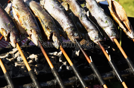 trout on grill trout festival