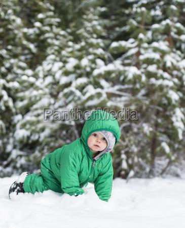 baby, playing, in, the, snow - 19387048