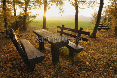 picnic area in park odenwald hesse
