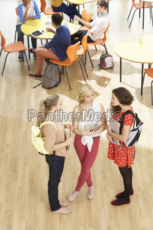overhead, shot, of, female, students, standing - 19407462