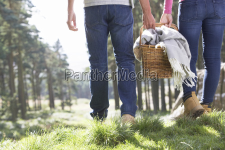 couple, having, picnic, in, countryside - 19408880